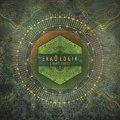Ekaologik / Light Seeds