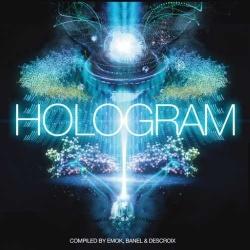 V.A / Hologram - 20 Years Iboga Records