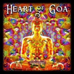 画像1: V.A / Heart Of Goa V3