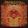 Androcell / Imbue
