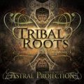 V.A / Tribal Roots Vol. 1