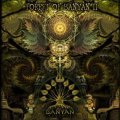 V.A / Forest of Banyan II