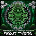 V.A / Forest Thunder (2CD)