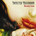 Infected Mushroom / Becoming Insane