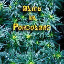 画像1: V.A / Alice In Pondoland