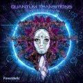 V.A / Quantum Transitions