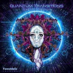 画像1: V.A / Quantum Transitions