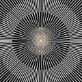 Nervasystem / Brainradio