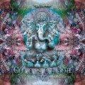 V.A / Colors Of Goa Vol.2