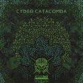 V.A / Cyber Catacomba