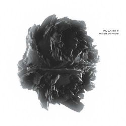 画像1: V.A / POLARITY - mixed by Focal (2CD)