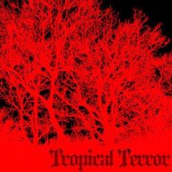 画像1: V.A / Tropical Terror