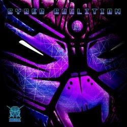 画像1: V.A / Cyber Coalition