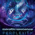 Morphic Resonance / Perplexity
