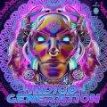 V.A / Indigo Generation