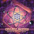 Psylent Buddhi / Secrets Of The Atom
