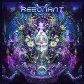 Rezonant / Time Code