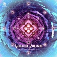 Liquid Viking / Spiritual Awakening
