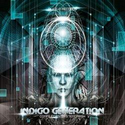 画像1: 【お取り寄せ】 V.A / Indigo Generation