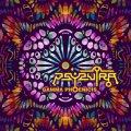 Psysutra / Gamma Phoenicis
