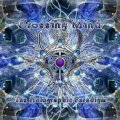 Crossing Mind / The Holographic Paradigm