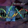 V.A / Double Helix