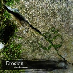 画像1: V.A / EROSION