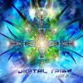 Digital Tribe / This Is It