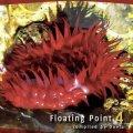 【お取り寄せ】 V.A / FLOATING POINT 4