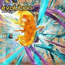 画像1: 【お取り寄せ】 V.A / Evolution