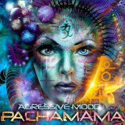 画像1: Agressive Mood / Pachamama