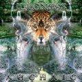 Archaic / Wildness