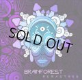 Brainforest / Remastered