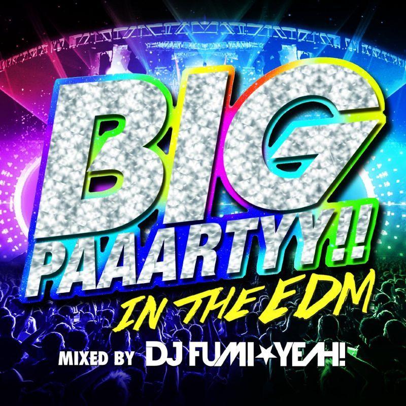 画像1: V.A / Big Paaartyy!! In The EDM