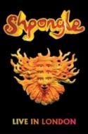 画像1: Shpongle / Live in London (DVD)