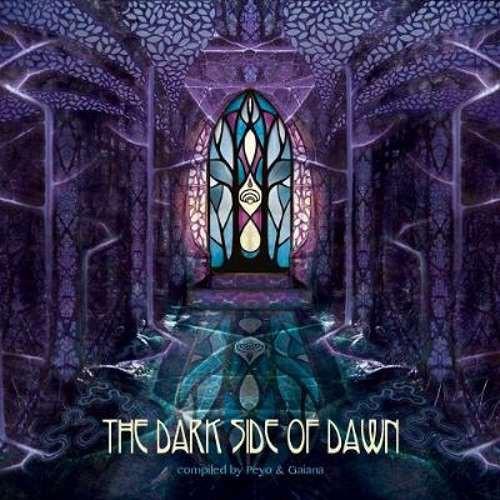 画像1: V.A / The Dark Side Of Dawn