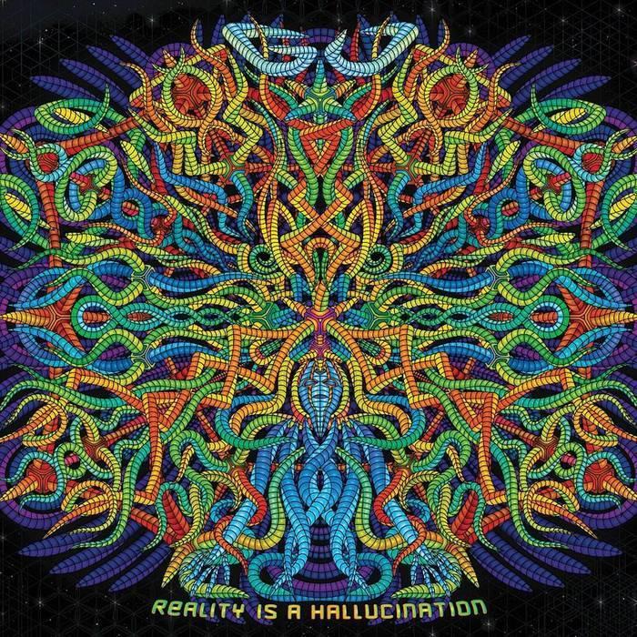 画像1: Gu / Reality Is A Hallucination