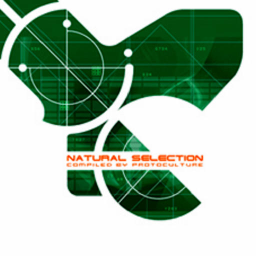 画像1: V.A / Natural Selection