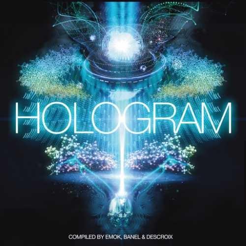 画像1: V.A / Hologram - 20 Years Iboga Records