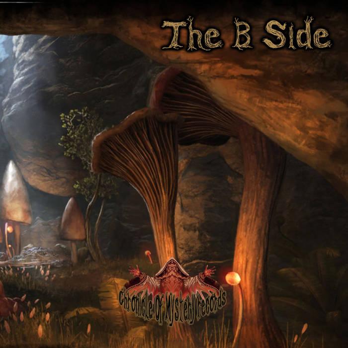 画像1: V.A / The B Side