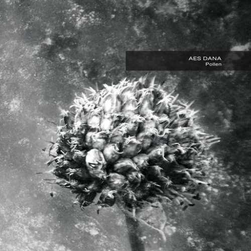画像1: Aes Dana / Pollen  (Remastered)