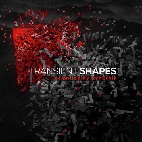 画像1: V.A / Transient Shapes