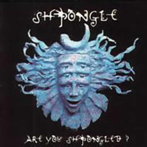 画像1: Shpongle / Are You Shpongled ?